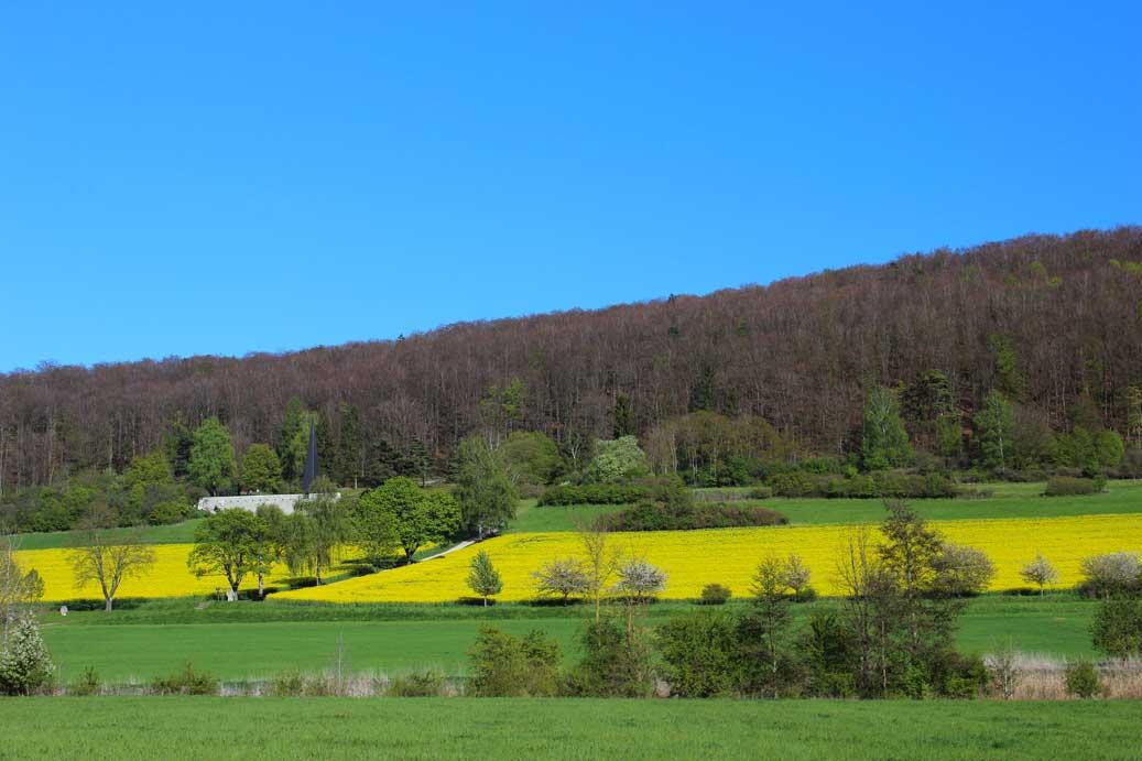 Fotos, Landschaft, Frühling, Treuchtl. | freestyleartshop